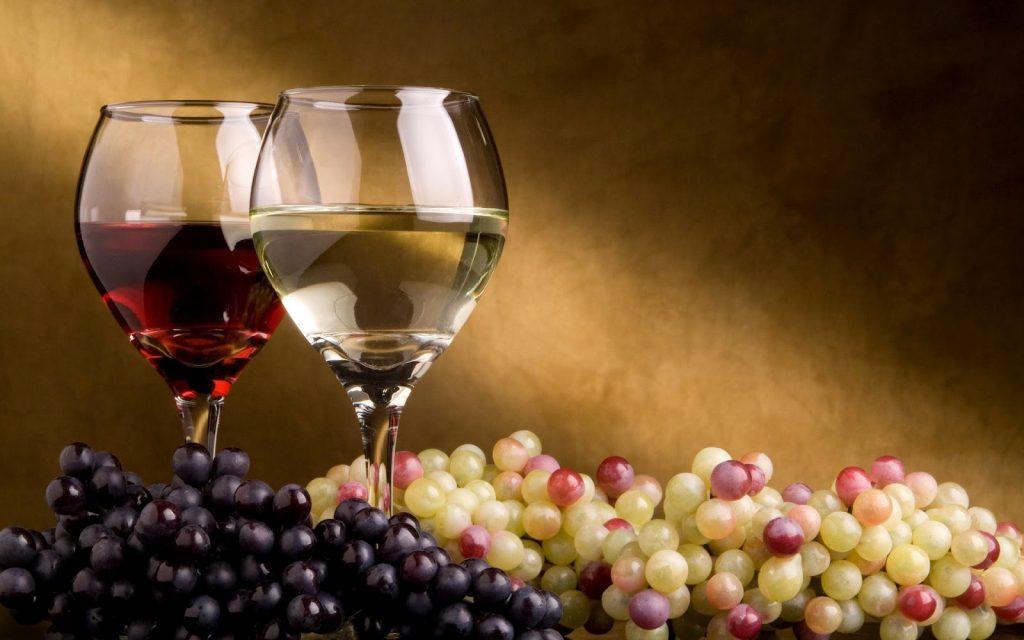ruta Benidorm y cata de vinos