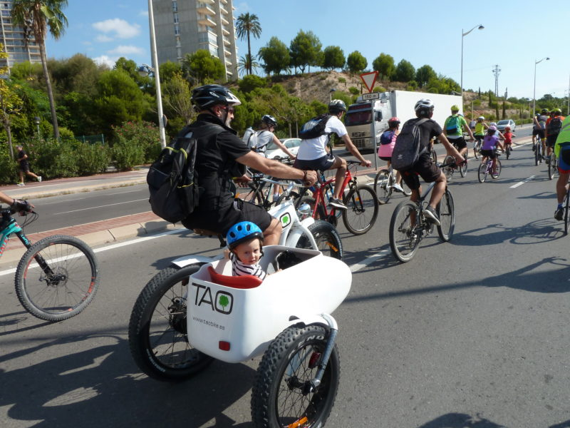 Sidecar TAO Bike